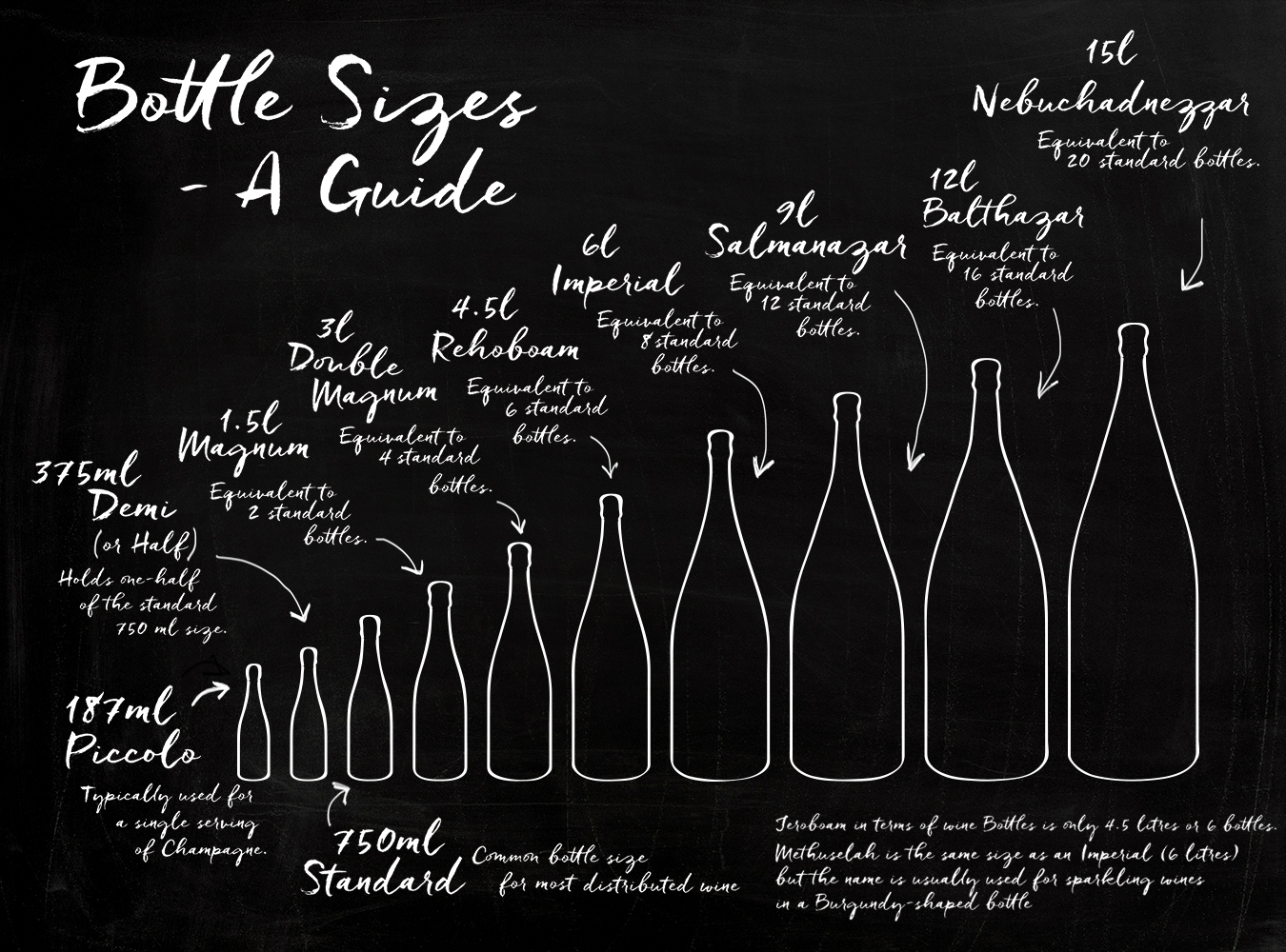 INFO-GRAPHIC | Bottle Sizes (& Why Magnum Bottles Might Be Best)