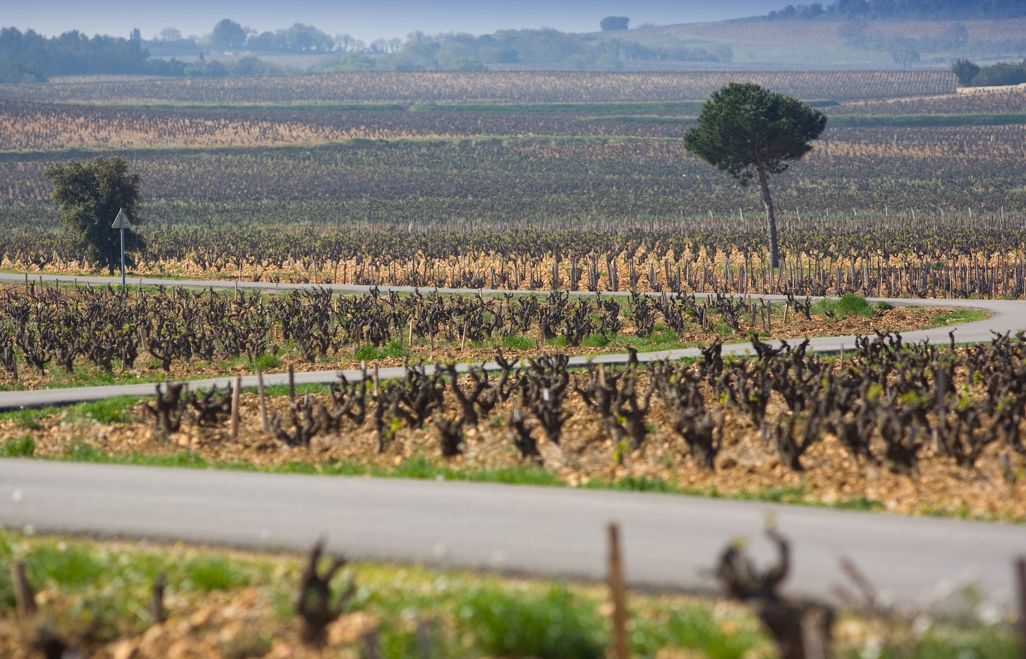 #MeetTheMakers | French Winery Famille Perrin