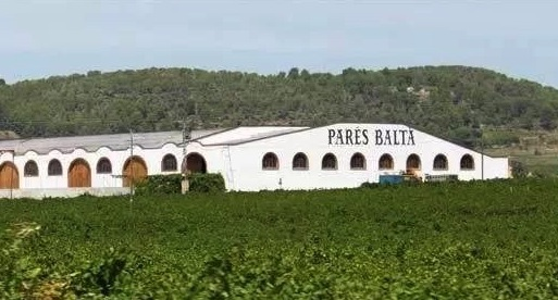 Biodynamic Wine, Spain & Cava | An Interview with Parés Baltà