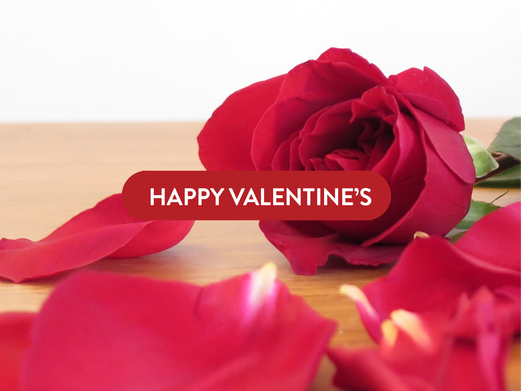 Hong Kong | Get a FREE Rose with Every Order this Valentine's Day