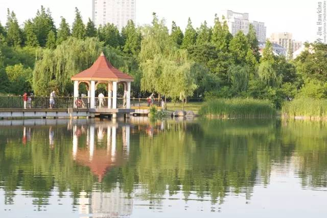 The Six Best Shanghai Parks for a Boozy Golden Week Picnic