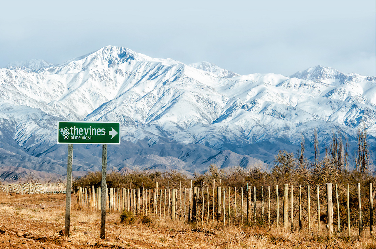 Mendoza, epicenter of Argentinian wines